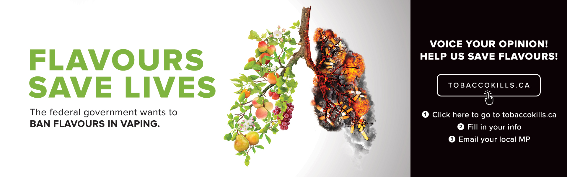 Flavours-Save-Lives_Web-Banner_1920x600_Ver1